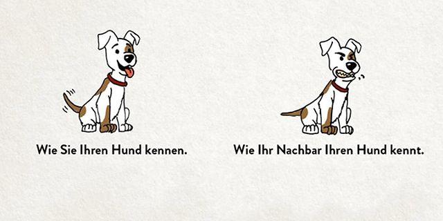artikelbild-grafik-darum-hundehalterhaftpflicht.jpg