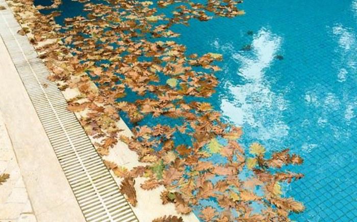 swimmingpool-richtig-versichern-artikelbild.jpg